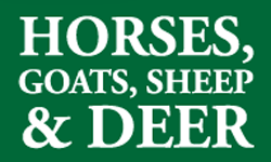 horses-goats-sheep-deer-module